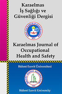 Karaelmas Journal of Occupational Health and Safety