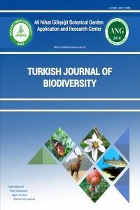 Turkish Journal of Biodiversity